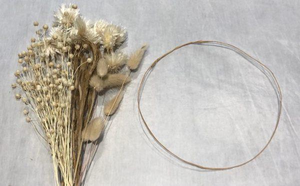 dried crown web